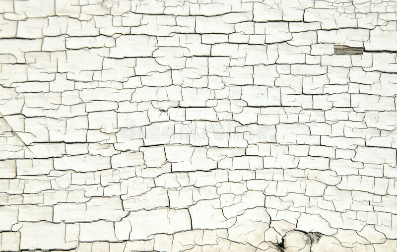 Cracked White Paint Texture On Old Wood Stock Image Image Of Texture Exterior 77952269