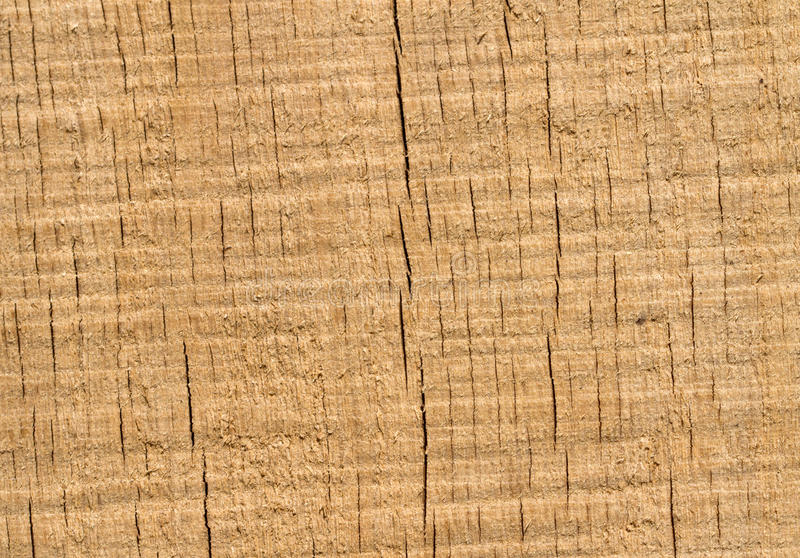 Cracked wood royalty free stock images