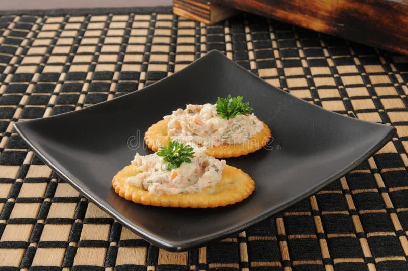 Cracker con la immersione del salmone affumicato fotografie stock
