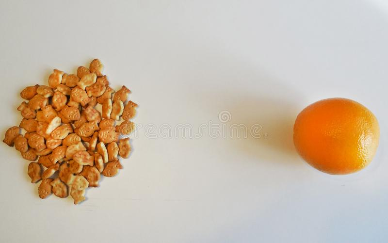 Crackers tegenover sinaasappel op witte achtergrond stock fotografie