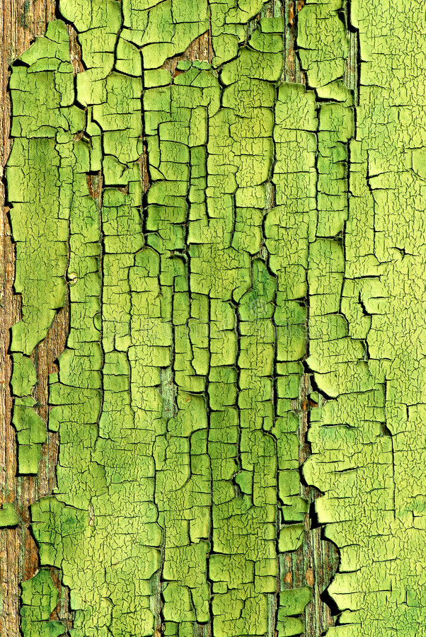 Free Crackled Green Paint Backgroun Royalty Free Stock Images - 3204509