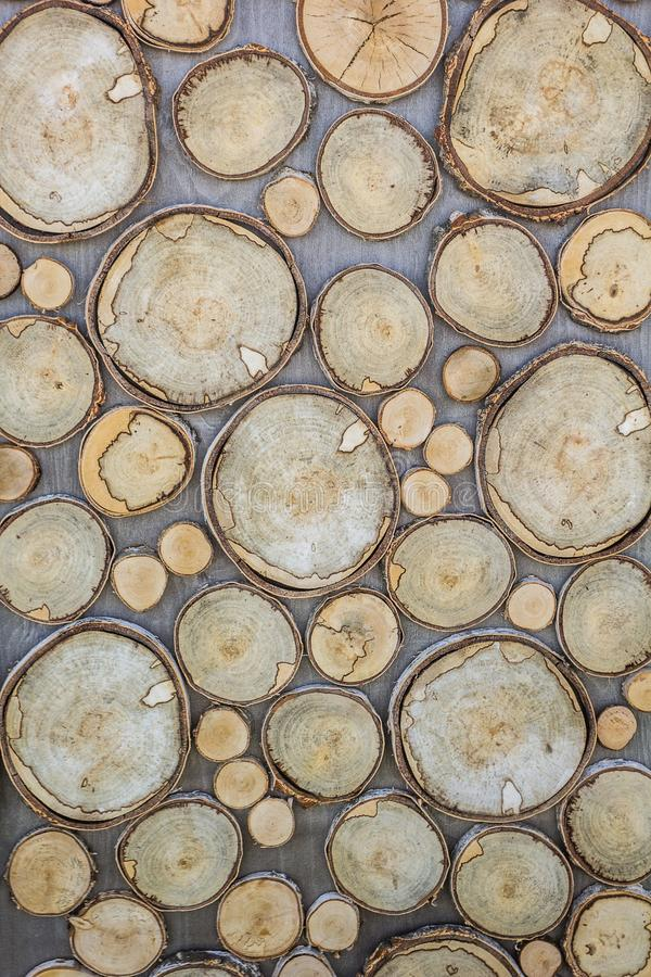 Cracks, annual rings, bark texture of wood, round shape, which are carved from a large and small tree. Vertical Background and stock photography