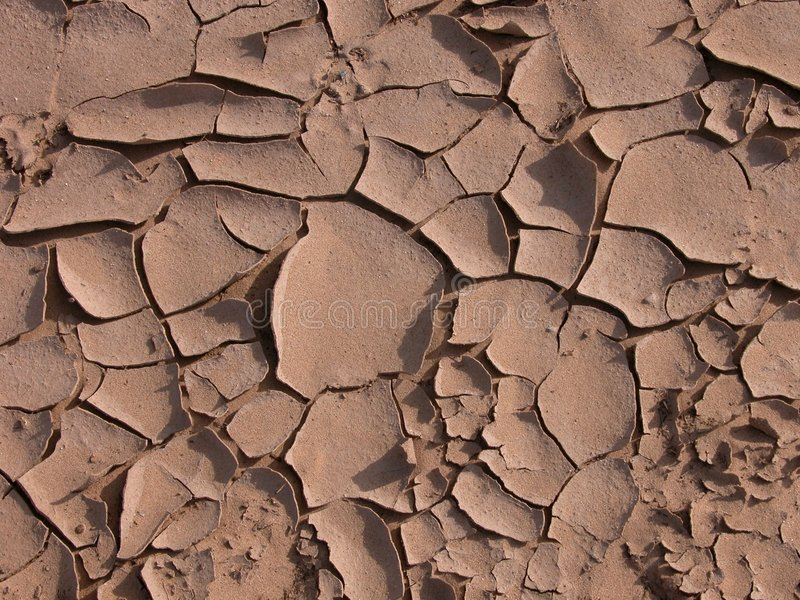 Cracks in the desert. Poor soil cracking after a desert rain. New Mexico royalty free stock photo