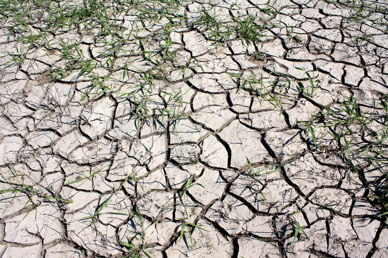 Download Cracks in earth stock photo. Image of grass, empty, adversity - 26502310