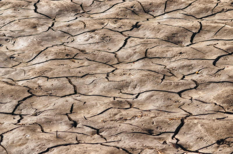 Cracks in the ground. Cracks in the soil, sowing problems agricultures royalty free stock images