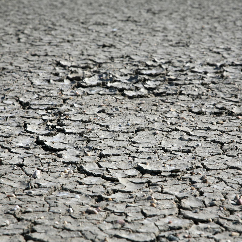 Free Cracks In Dried Mud Stock Image - 10183971