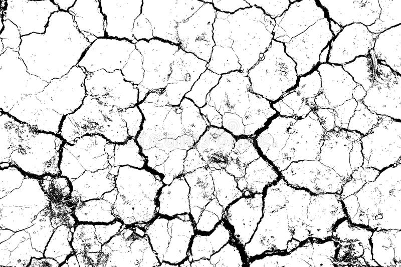 The cracks texture white and black. vector illustration