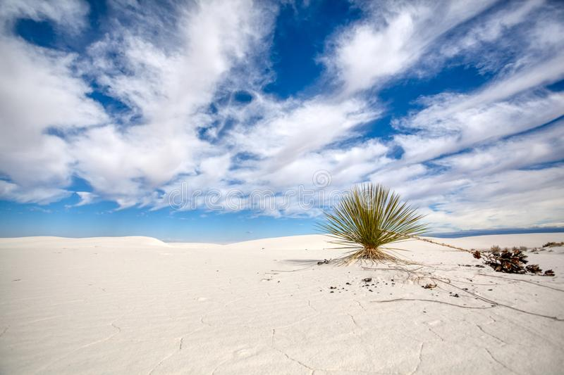 Patterns in the sand at White Sands National Monument. stock photo