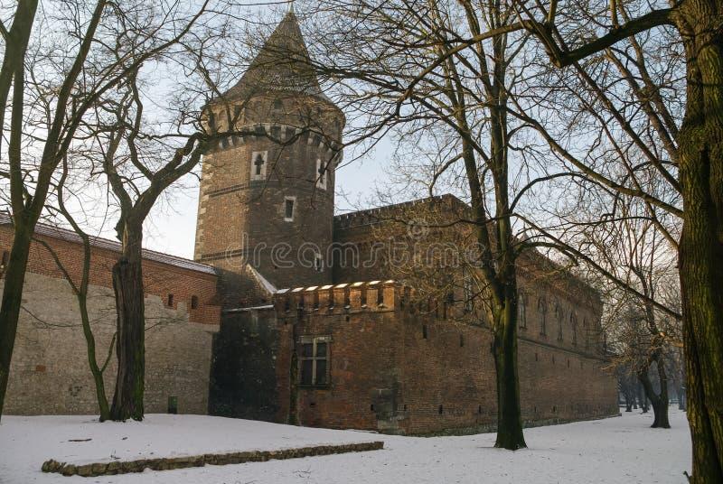 Cracovia, Polonia, mura di cinta con i carpentieri si eleva fotografia stock libera da diritti