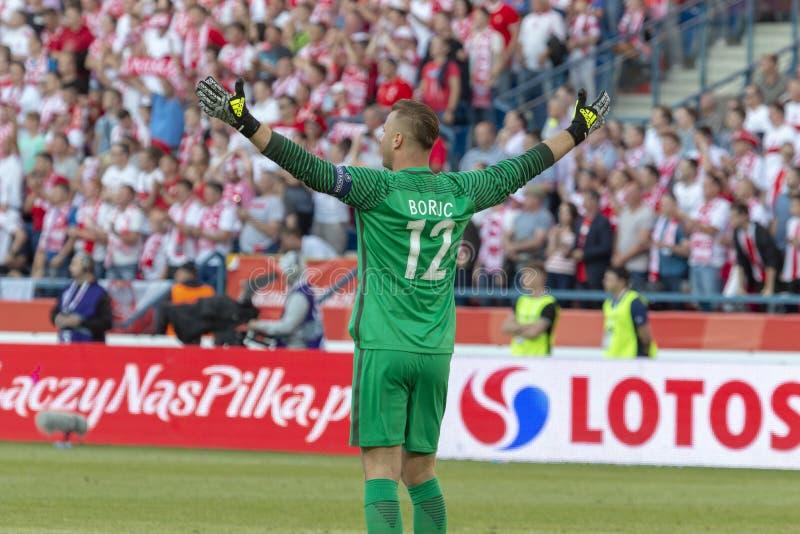 Artur Boruc Goalkeeper royalty free stock photo