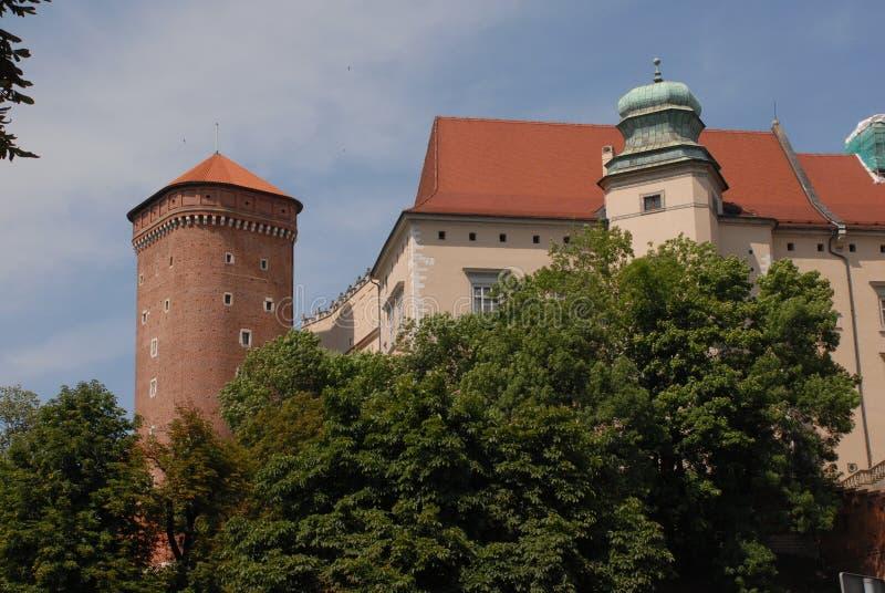 Cracow Wawel, castl arkivfoto