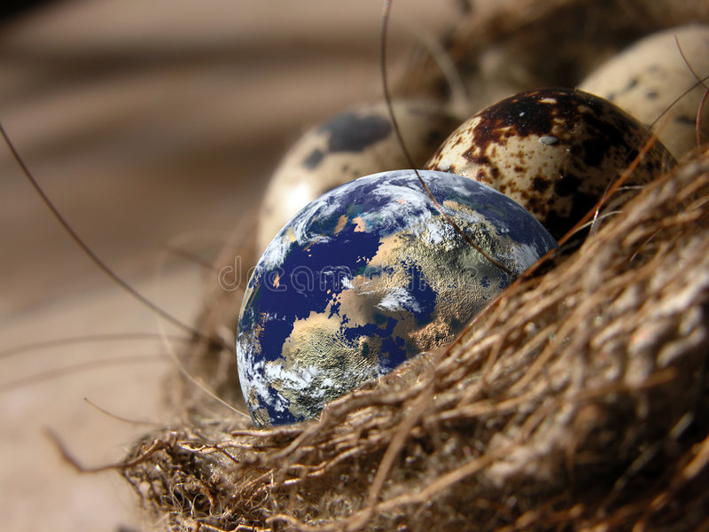 Download Cradle of planets stock photo. Image of living, animal, sphere - 3464