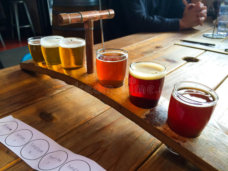 Craft Beer Sampler. Craft beers are served together in a sampler tray for the beer enthusiast at a restaurant in Oregon