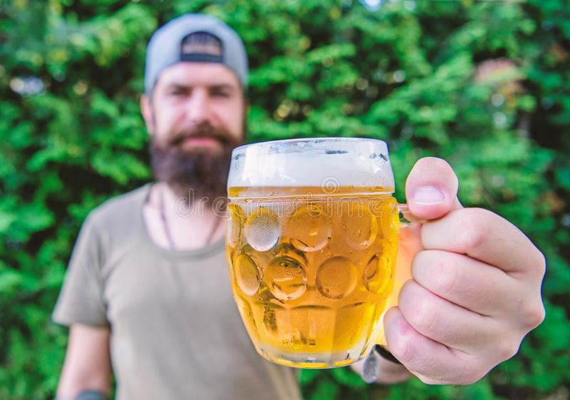 Craft beer is young, urban and fashionable. Creative young brewer. Distinct beer culture. Hipster brutal bearded man. Hold mug cold fresh beer. Man enjoying stock image