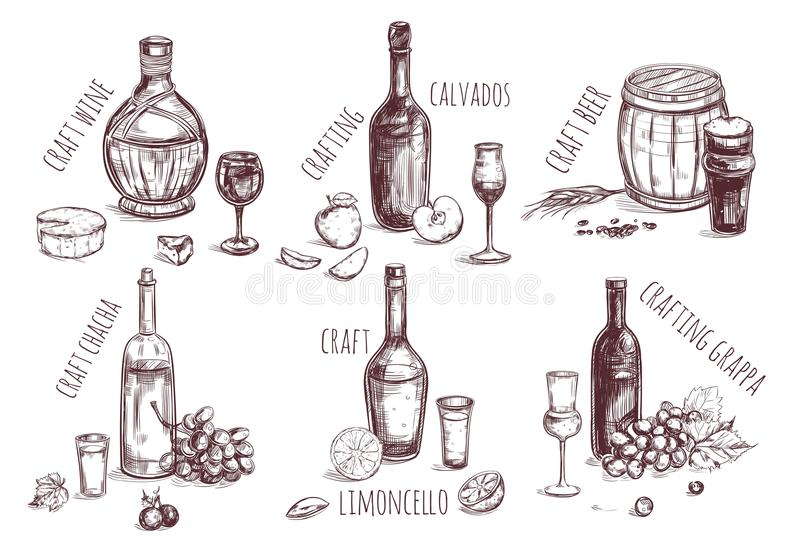 Craft Drink Sketch Elements Set. With different alcoholic beverages and ingredients for production isolated vector illustration stock illustration