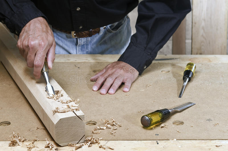 Craftsman working maple wood with chisel. Craftsman chiseling maple wood illustrating the concept of craftsmanship and quality stock image