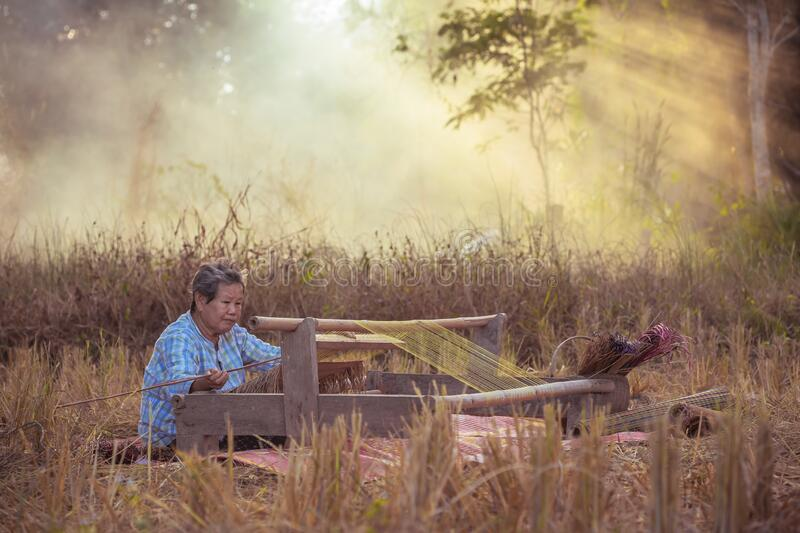 Craftsperson working. Old woman weaving the mat. Senior women making the traditional mat. Old Women weaving mat by straw on rice. Craftsperson working. Old woman stock image
