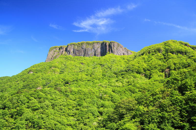 Download Crag Mountain With Fresh Verdure Royalty Free Stock Photography - Image: 31444417