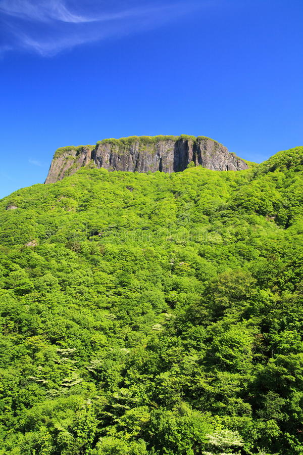 Download Crag Mountain With Fresh Verdure Stock Image - Image: 31444443