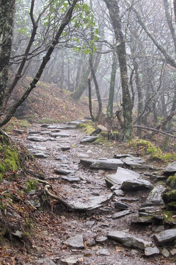 Craggy Gardens Pinnacle Trail royalty free stock images