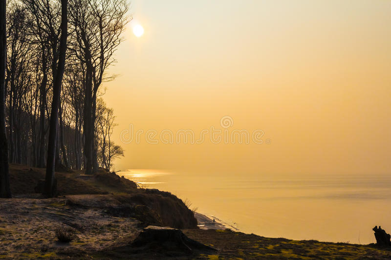 Craggy shore Baltic Sea afternoon. Craggy shore of the Baltic Sea in the late afternoon royalty free stock images