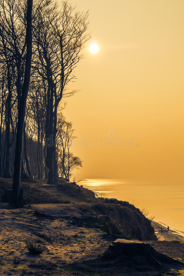 Craggy shore Baltic Sea afternoon royalty free stock photography