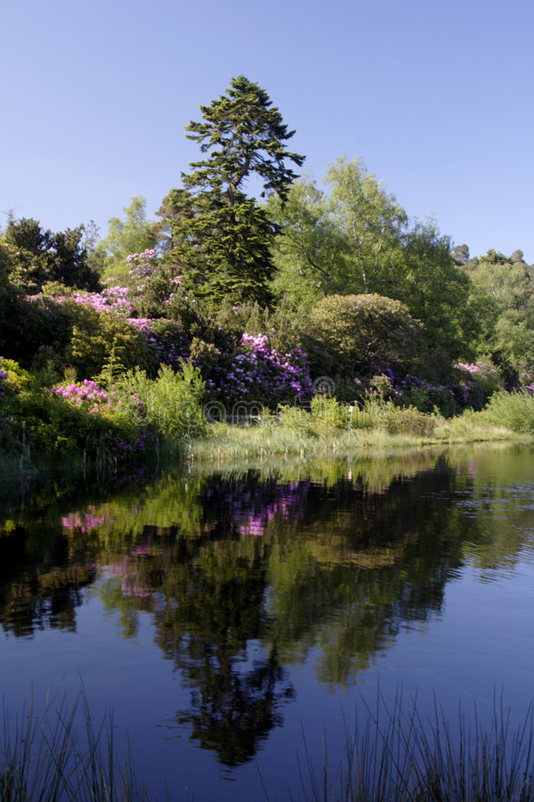 Cragside Reflexionen lizenzfreies stockbild