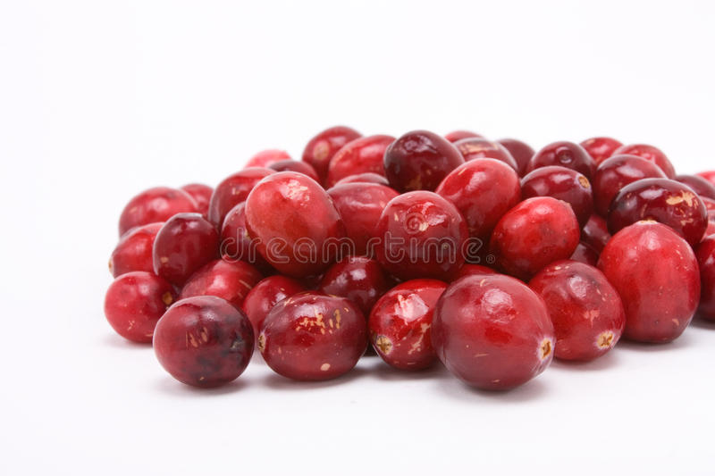 Cranberries. Pile of Cranberries isolated against white background with shallow focus from low viewpoint royalty free stock image
