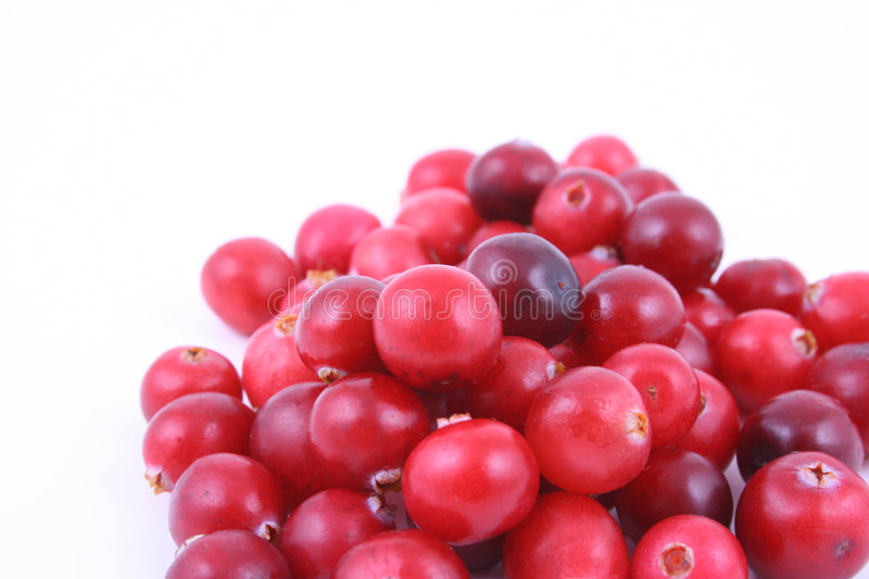 Cranberries. Pile of fresh cranberries isolated on white stock images