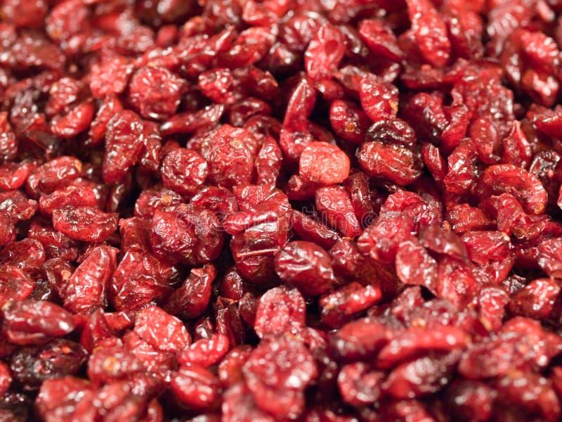 cranberries zdjęcie royalty free