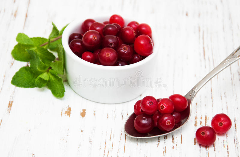 Cranberries zdjęcie stock