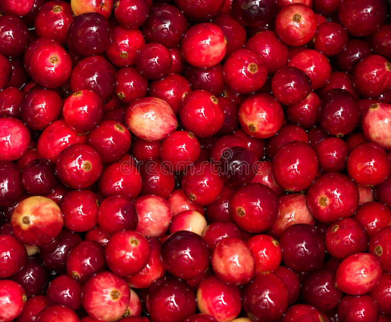 Download Cranberries Boiling In Pot Royalty Free Stock Photos - Image: 26939888