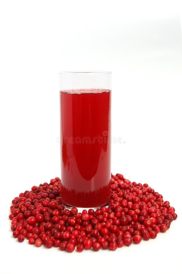 cranberries dricker frukt arkivbilder