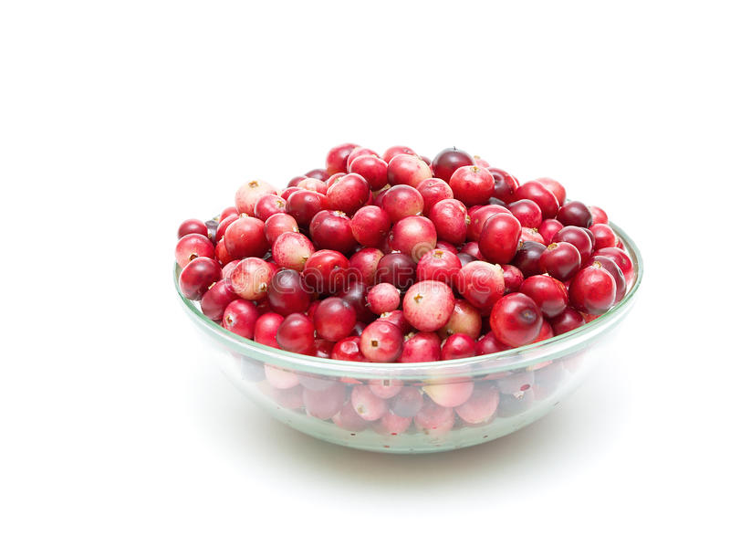 Cranberries in a glass bowl on a white background stock images
