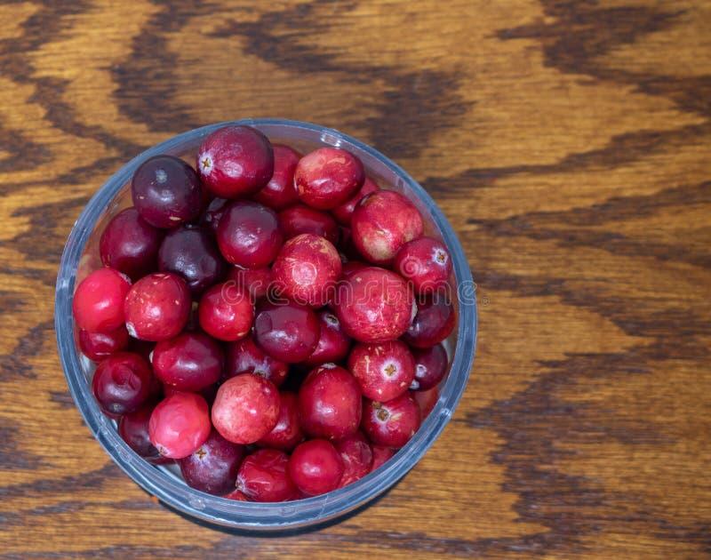 Cranberries i en bunke royaltyfri fotografi