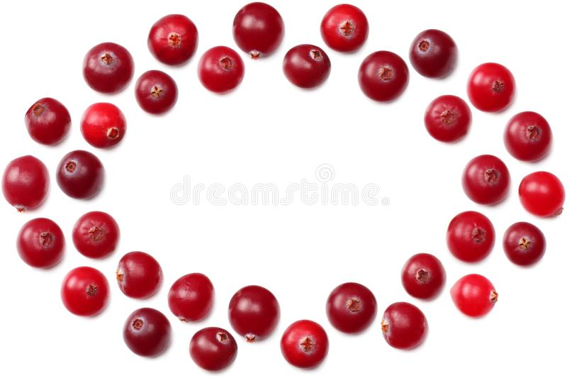 Cranberries on white background. top view with copy space. Cranberries isolated on white background. top view with copy space royalty free stock photo