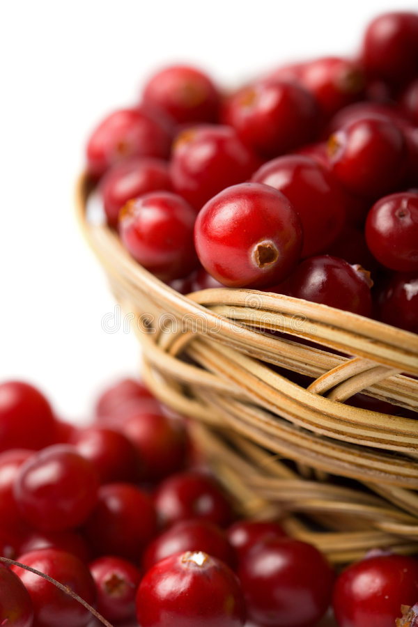 cranberries isolerade red royaltyfria foton