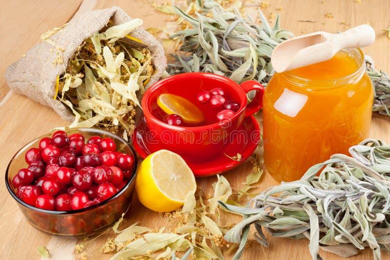 Cranberries, jar med honung och fruktteakopp royaltyfri fotografi