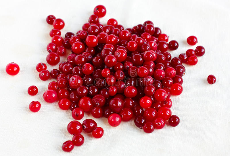 Download Cranberries On A Linen Tablecloth Stock Image - Image: 24867293