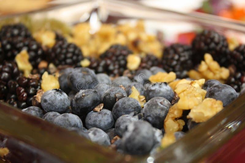 Cranberries, orzechy włoscy i czernicy, fotografia royalty free