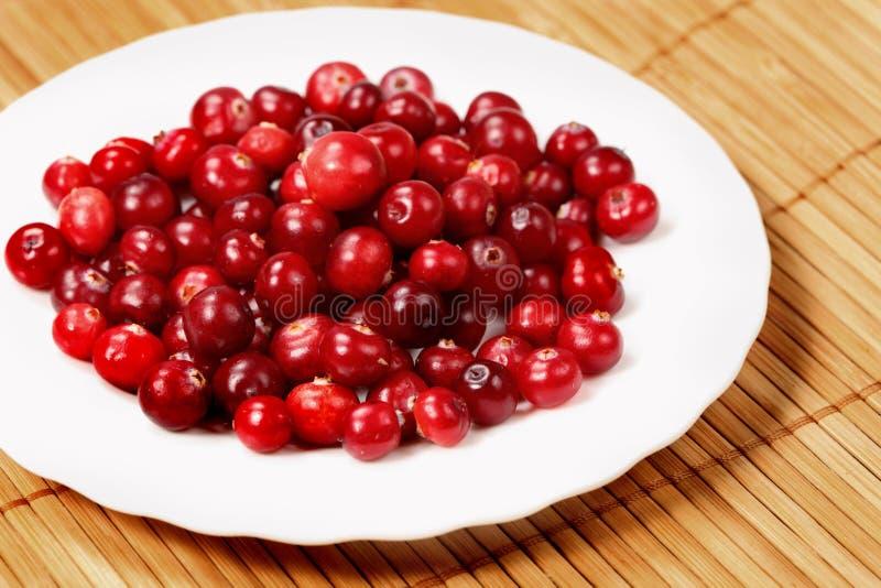 cranberries słodcy obraz stock