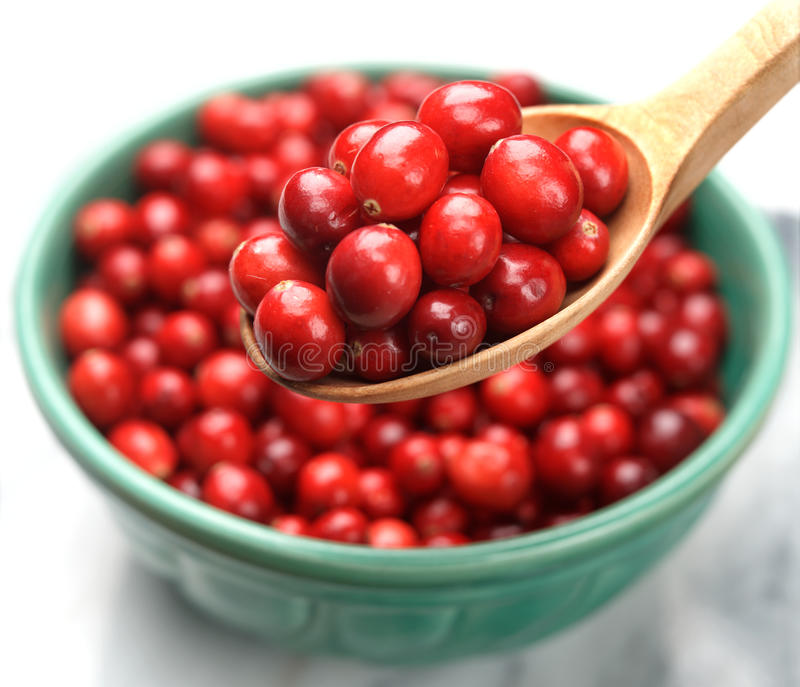 Cranberries on Spoon. Wooden Spoon Full of Cranberries stock photography