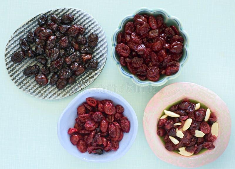 cranberries torkar royaltyfria foton