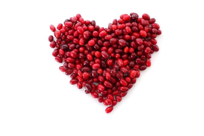 cranberrieshjärta royaltyfria foton