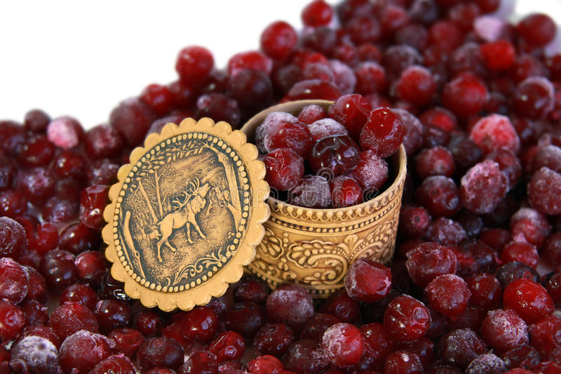 Download Cranberry stock photo. Image of vitamin, crop, berry - 10967540