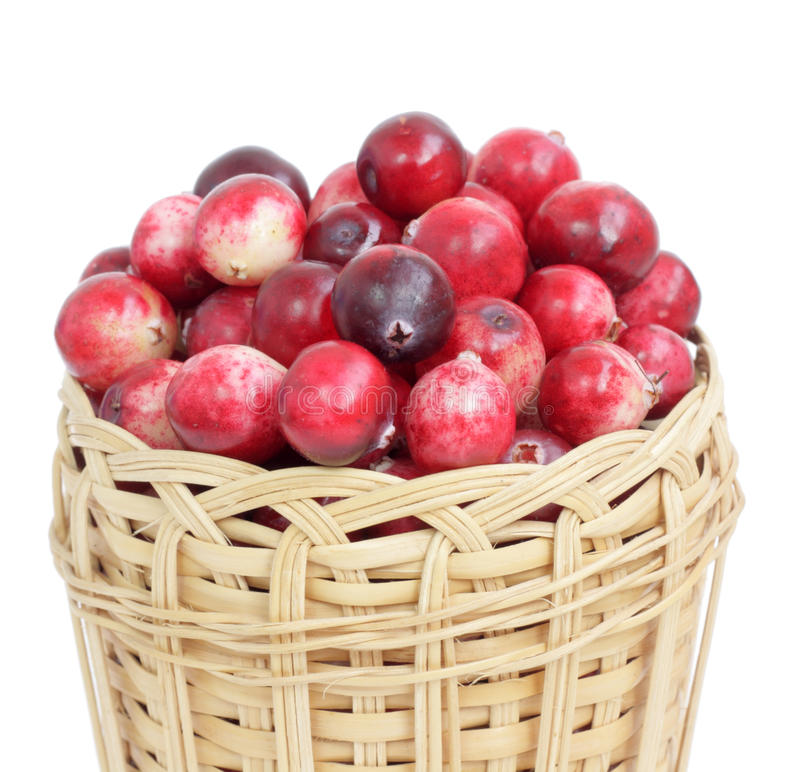 Cranberry. Fresh red cranberry in a wattled basket stock photography