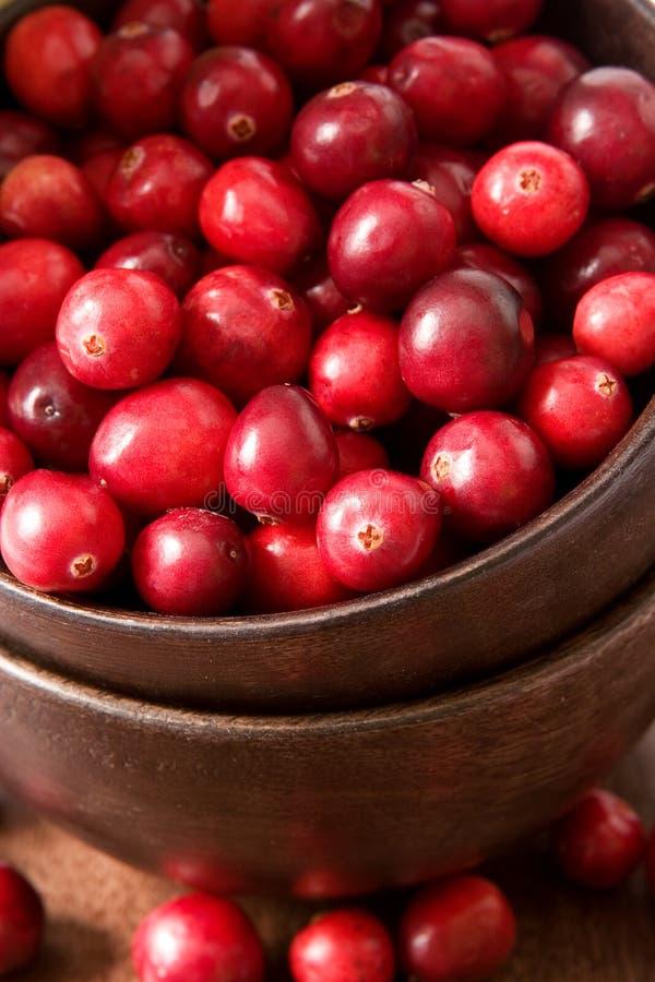 cranberry arkivbilder