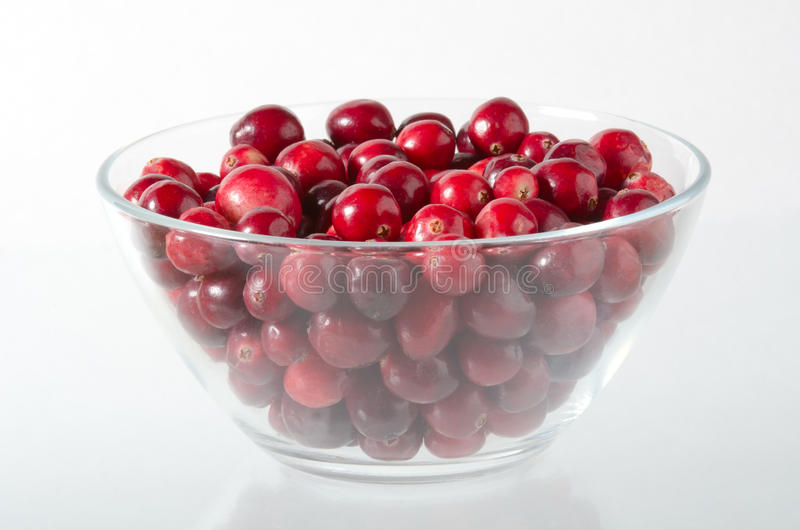 Cranberry stock photography