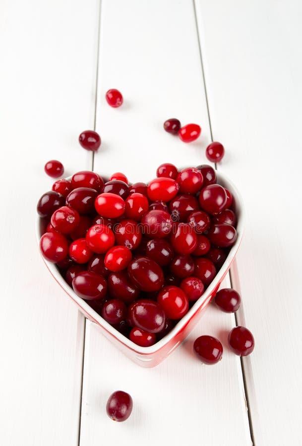 cranberry imagem de stock
