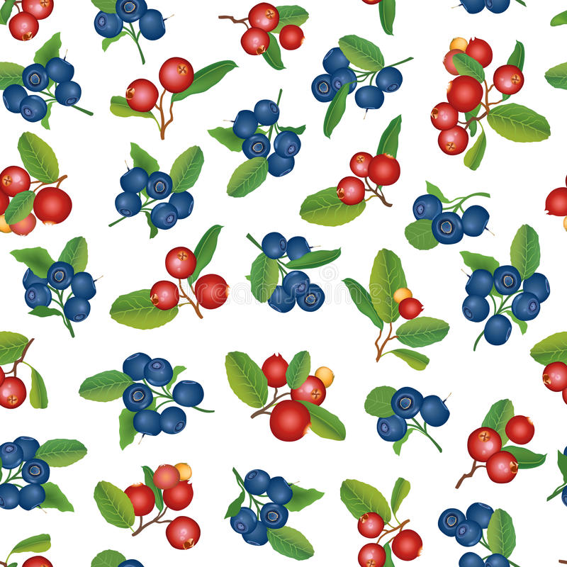 Cranberry and blueberry seamless background. Ripe red cranberries with leaves. Vector illustration. stock illustration